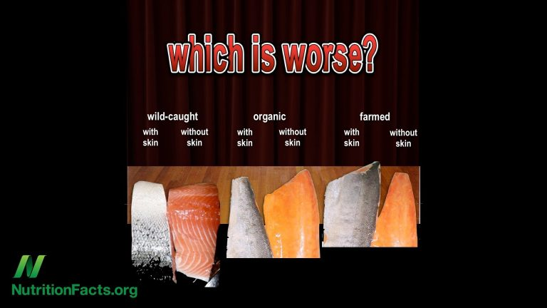 The Problem with Organic Salmon