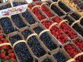 Best Fruits For Cancer Prevention