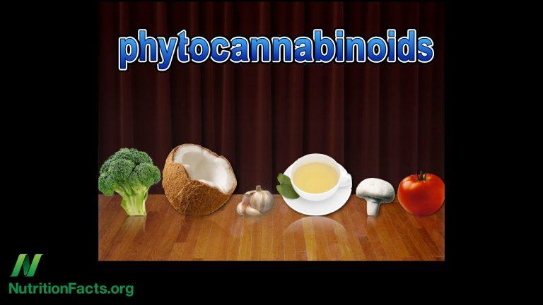NF-Cannabis Receptors & Food