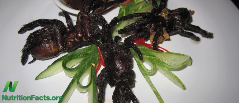Bug Appétit- Barriers to Entomophagy