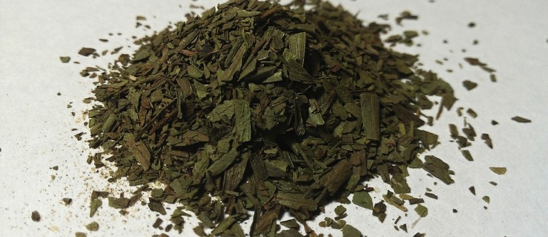 NF-Apr22 The Safety of Tarragon