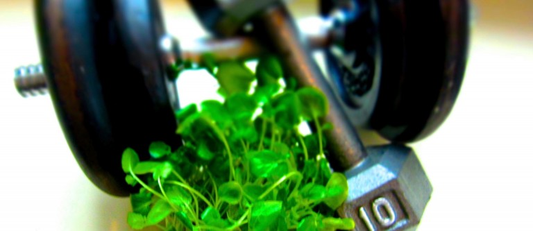 NF-August14 Preventing Exercise-Induced Oxidative Stress With Watercress