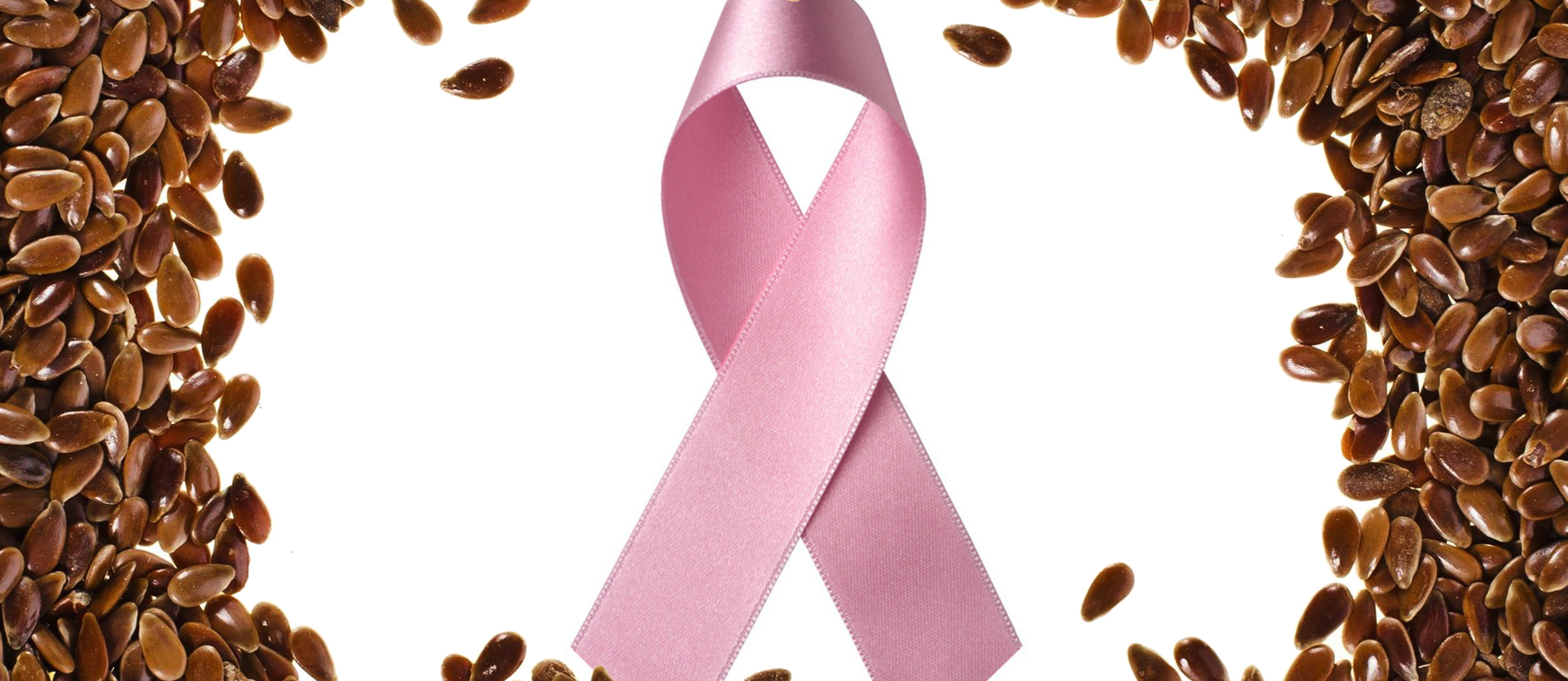 Flax and Breast Cancer Survival
