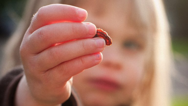 Are Raisins Good Snacks for Kids?