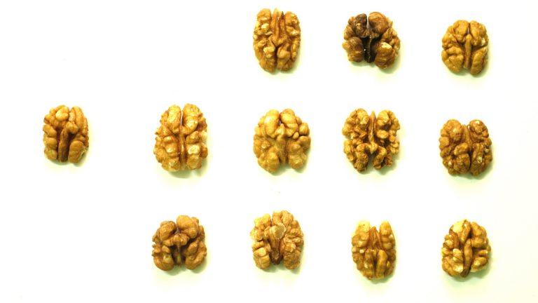 PREDIMED: Does Eating Nuts Prevent Strokes?