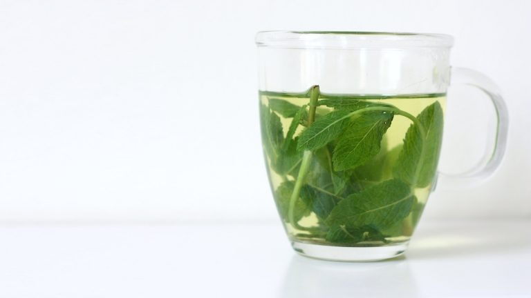 Peppermint Aromatherapy for Nausea